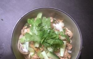 morimoto's pork noodle jumble