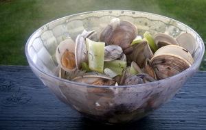 picnic RI clams