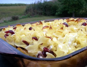 noodle kugel with cranberries
